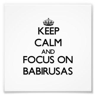 Keep calm and focus on Babirusas Photo Print