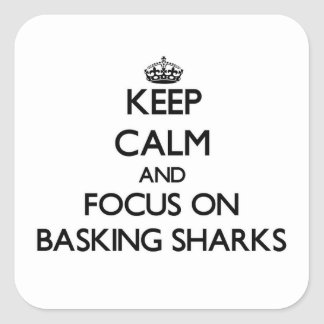 Keep calm and focus on Basking Sharks Square Sticker