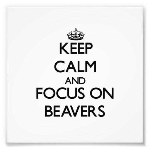 Keep Calm and focus on Beavers Photo Print