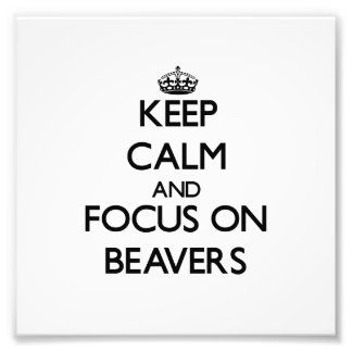 Keep Calm and focus on Beavers Photo Print