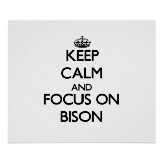 Keep Calm and focus on Bison Print