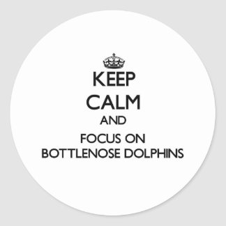 Keep calm and focus on Bottlenose Dolphins Round Stickers