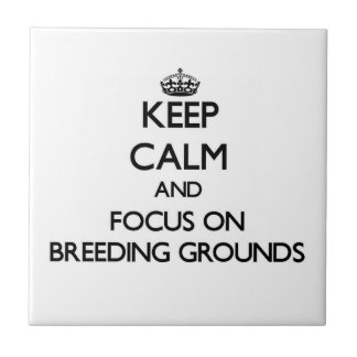 Keep Calm and focus on Breeding Grounds Ceramic Tile