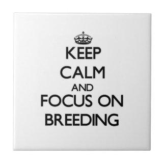 Keep Calm and focus on Breeding Tiles