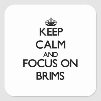 Keep Calm and focus on Brims Stickers