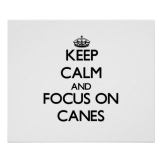 Keep Calm and focus on Canes Poster