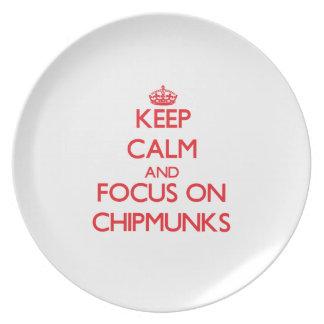 Keep calm and focus on Chipmunks Dinner Plates