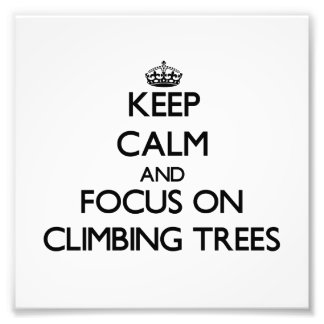 Keep Calm and focus on Climbing Trees Photograph
