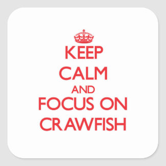 Keep Calm and focus on Crawfish Square Sticker