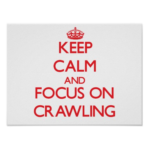 Keep Calm and focus on Crawling Poster