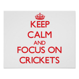 Keep Calm and focus on Crickets Poster