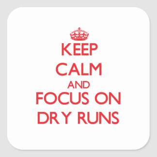 Keep Calm and focus on Dry Runs Square Sticker
