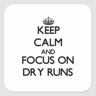 Keep Calm and focus on Dry Runs Sticker