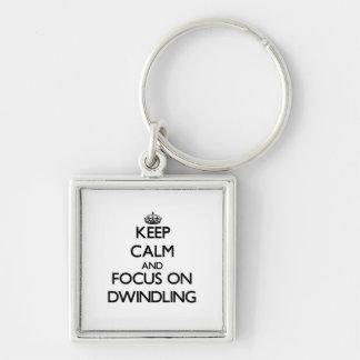 Keep Calm and focus on Dwindling Keychain
