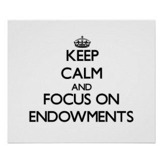 Keep Calm and focus on ENDOWMENTS Posters