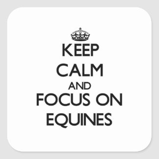 Keep Calm and focus on EQUINES Square Sticker