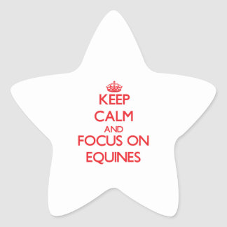 Keep Calm and focus on EQUINES Star Sticker