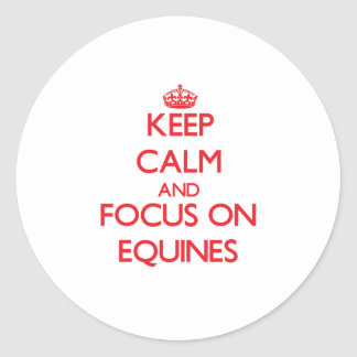 Keep Calm and focus on EQUINES Round Stickers