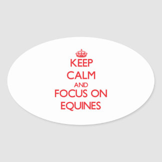 Keep Calm and focus on EQUINES Oval Sticker