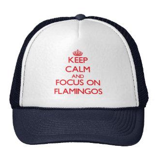 Keep Calm and focus on Flamingos Cap