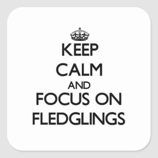 Keep Calm and focus on Fledglings Square Stickers