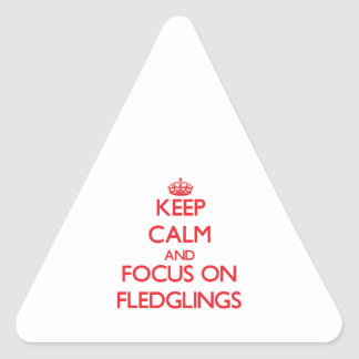 Keep Calm and focus on Fledglings Stickers