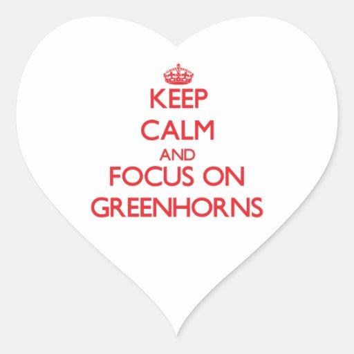 Keep Calm and focus on Greenhorns Sticker