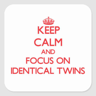 Keep Calm and focus on Identical Twins Stickers