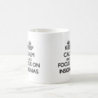 Keep Calm and focus on Insignias Mugs