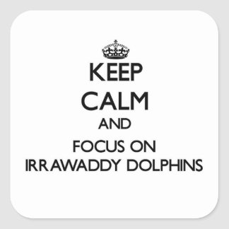 Keep calm and focus on Irrawaddy Dolphins Sticker