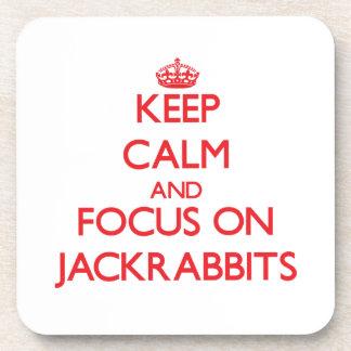 Keep calm and focus on Jackrabbits Coaster