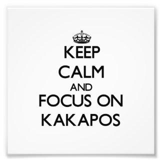 Keep calm and focus on Kakapos Photographic Print