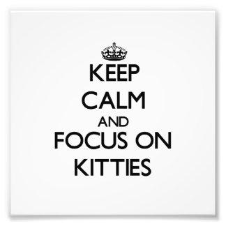 Keep Calm and focus on Kitties Photo Art