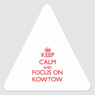 Keep Calm and focus on Kowtow Sticker