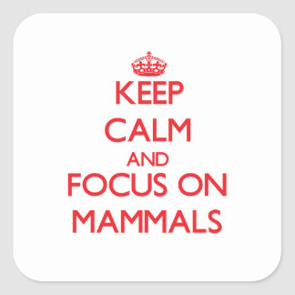 Keep Calm and focus on Mammals Square Stickers