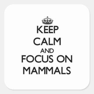 Keep Calm and focus on Mammals Sticker