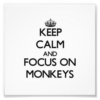 Keep Calm and focus on Monkeys Photo Print