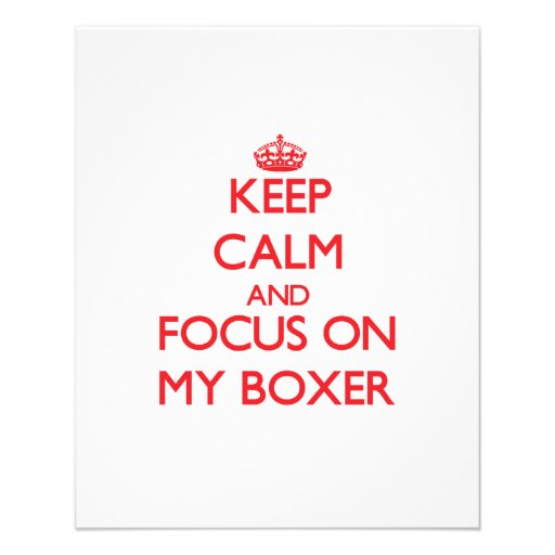 Keep Calm and focus on My Boxer Flyer Design