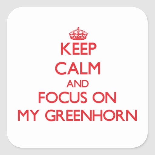 Keep Calm and focus on My Greenhorn Square Stickers
