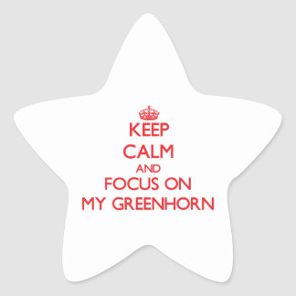 Keep Calm and focus on My Greenhorn Stickers