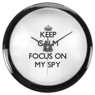 Keep Calm and focus on My Spy Aquavista Clocks