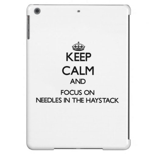 Keep Calm and focus on Needles In The Haystack iPad Air Case