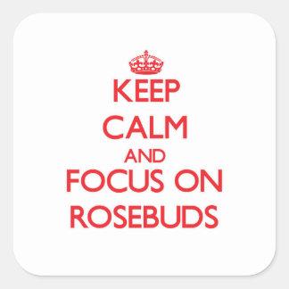 Keep Calm and focus on Rosebuds Square Sticker