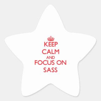 Keep Calm and focus on Sass Star Sticker