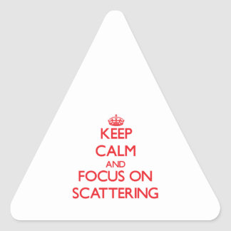 Keep Calm and focus on Scattering Stickers
