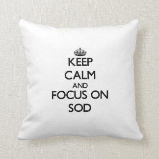 Keep Calm and focus on Sod Pillows