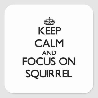 Keep Calm and focus on Squirrel Square Sticker