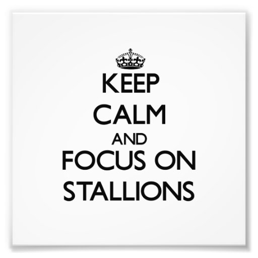 Keep Calm and focus on Stallions Photographic Print