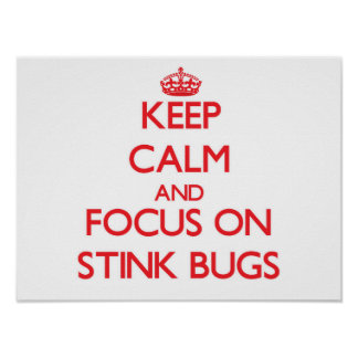 Keep Calm and focus on Stink Bugs Print