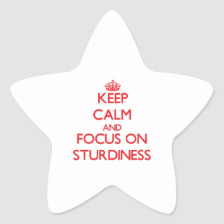 Keep Calm and focus on Sturdiness Star Stickers
